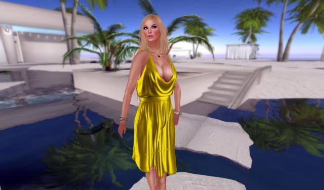 liberty dress_004