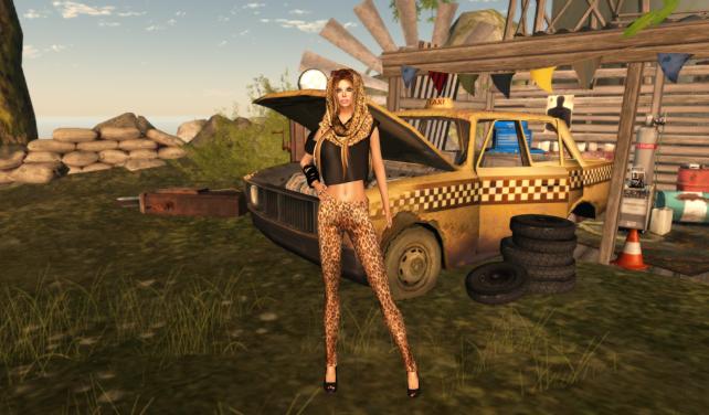 leopardo_001